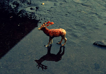 Deer by sockmonkeydogtoy
