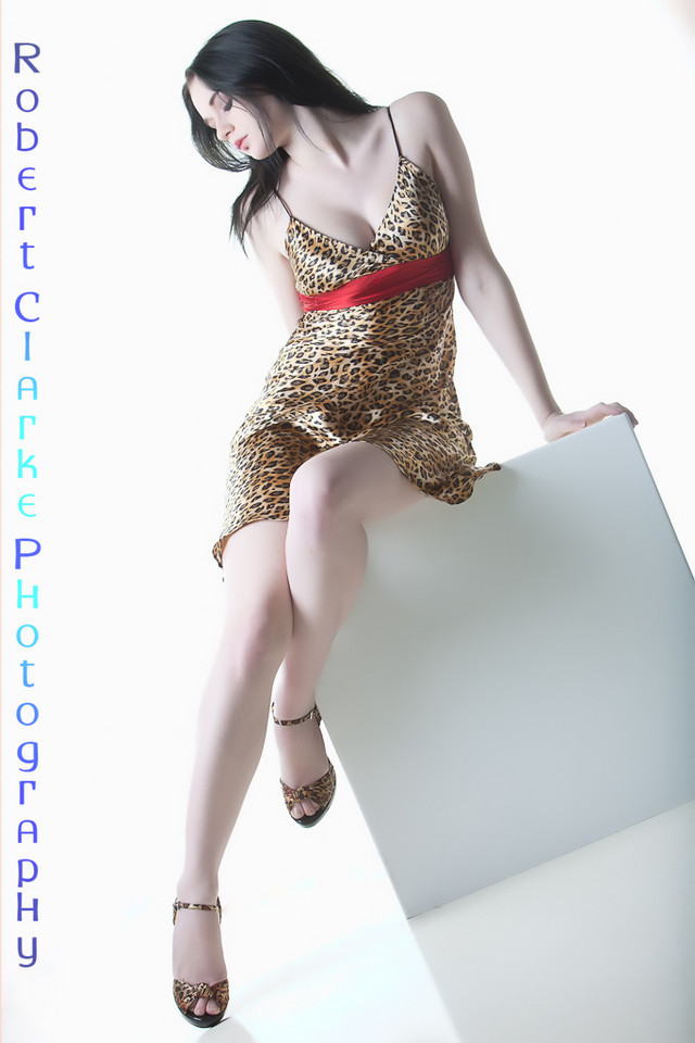 Leopard Print Glamour 3 by MordsithCara