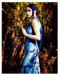 Blue Silk Sheathe 10