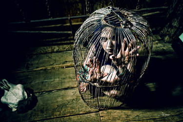 Caged 3 by MordsithCara
