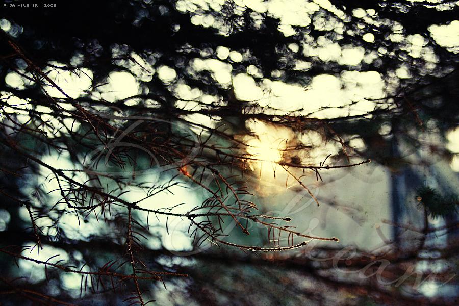 daydream by meldir