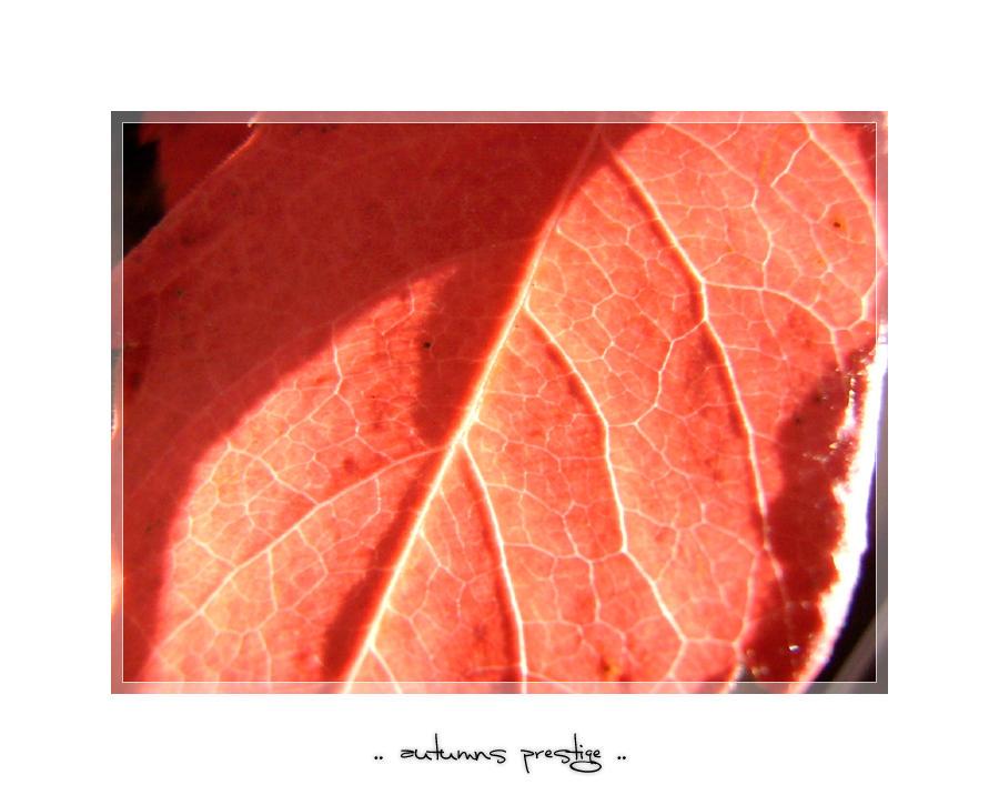 autumns prestige - I by meldir