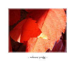 autumns prestige - II by meldir