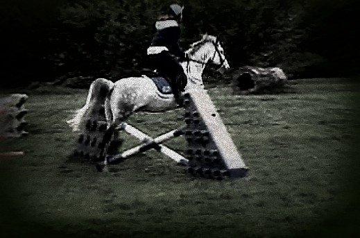 A Fairly Lo Jump- F$$K IT by horseshoegirl11