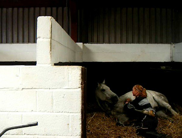 Horsey Huggle by horseshoegirl11