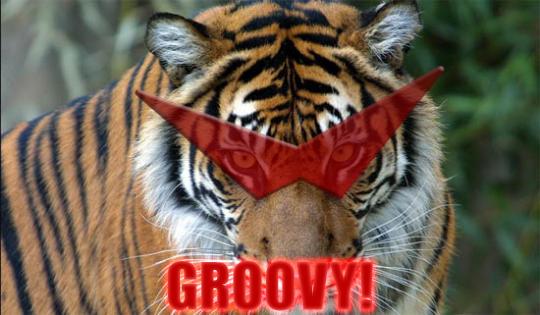 Groovy Tiger by Phoenixfirex