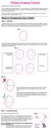 Drawing Faces-Basics Tutorial by N0ISEhazard