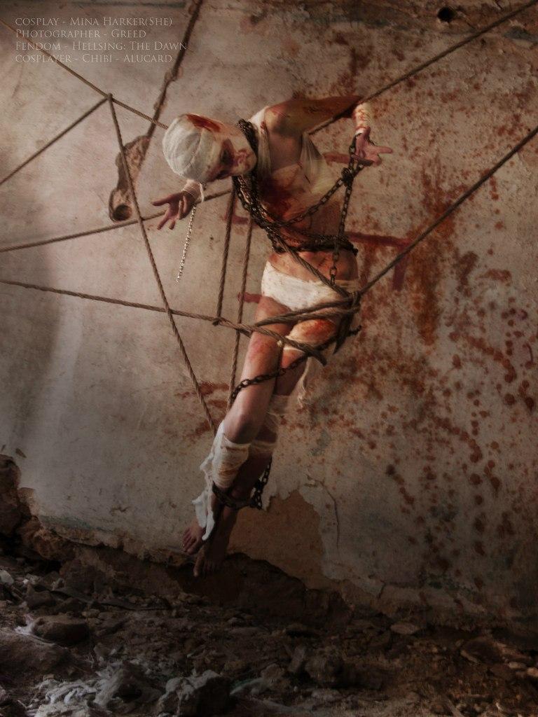 mina harkershe by chibialucard on deviantart
