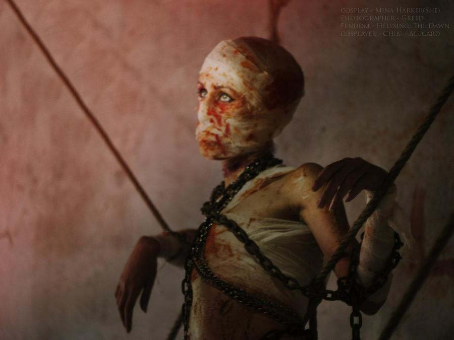 Mina Harker(She) by Chibi--Alucard