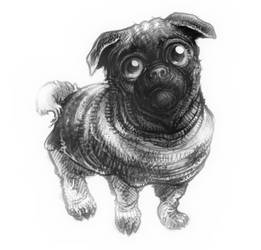 Just a Pug by Billified