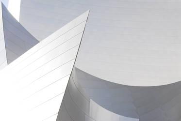 Walt Disney Concert Hall by FirstLightStudios