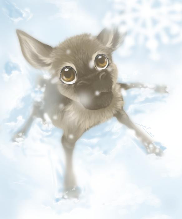 Baby reindeer in snow