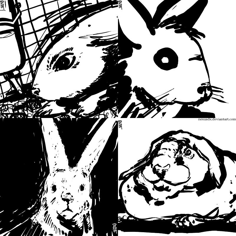 Bunnies x4 by NexusDX