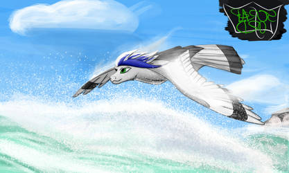 Wind Surfing by Scrap-Lord