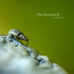 The Sentinel II