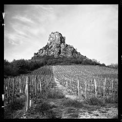 Rock of Solutre IV