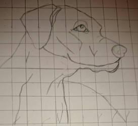 Grid Method - Dog by PhantomjackOLantern