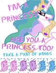 Princess Flyer