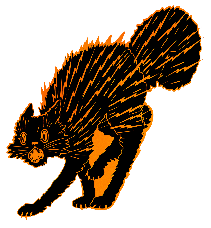 Halloween Lightning Cat