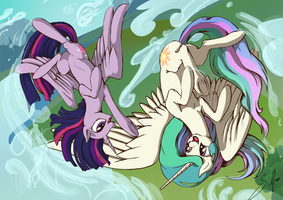 Commission: Fun Flight by SilFoe