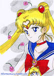 Happy Birthday Usagi!