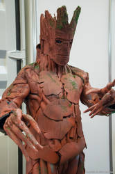 Groot at FACTS 2014