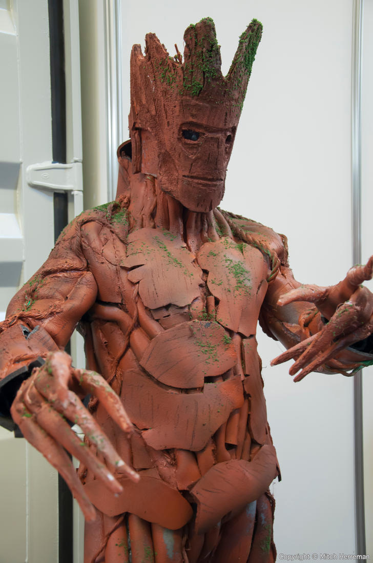 Groot at FACTS 2014 by KillingRaptor