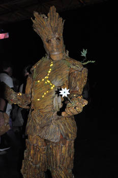 Groot at FACTS 2015