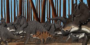 Centrosaurus herd