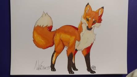 Fox by NovaStar134