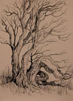 Canadian Tree by jenimal