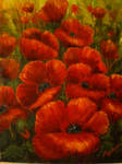 Poppies oil painting by isikay