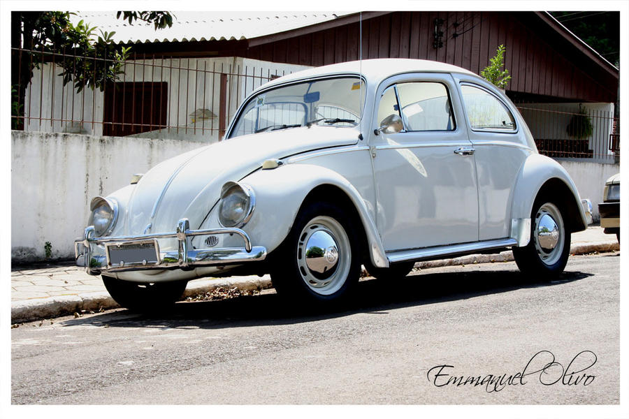 1965 vw bug wallpaper - photo #18