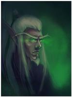Blood elf Magister by djari328