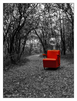 Red In The Woods