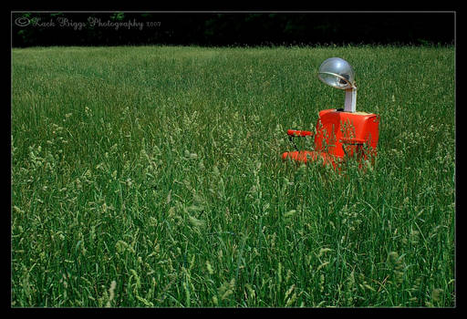 Red Chair In Tall Grass