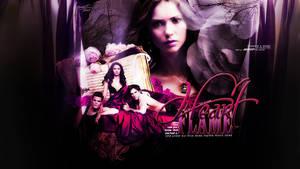 vampire diaries wallpaper 15
