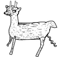 Deerp