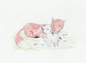 Bunny Cuddling a Red Fox