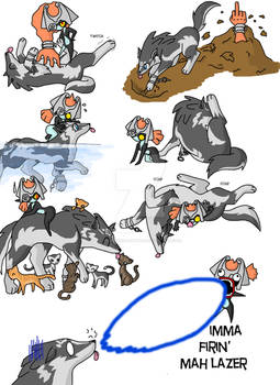 Wolf link chaos 3