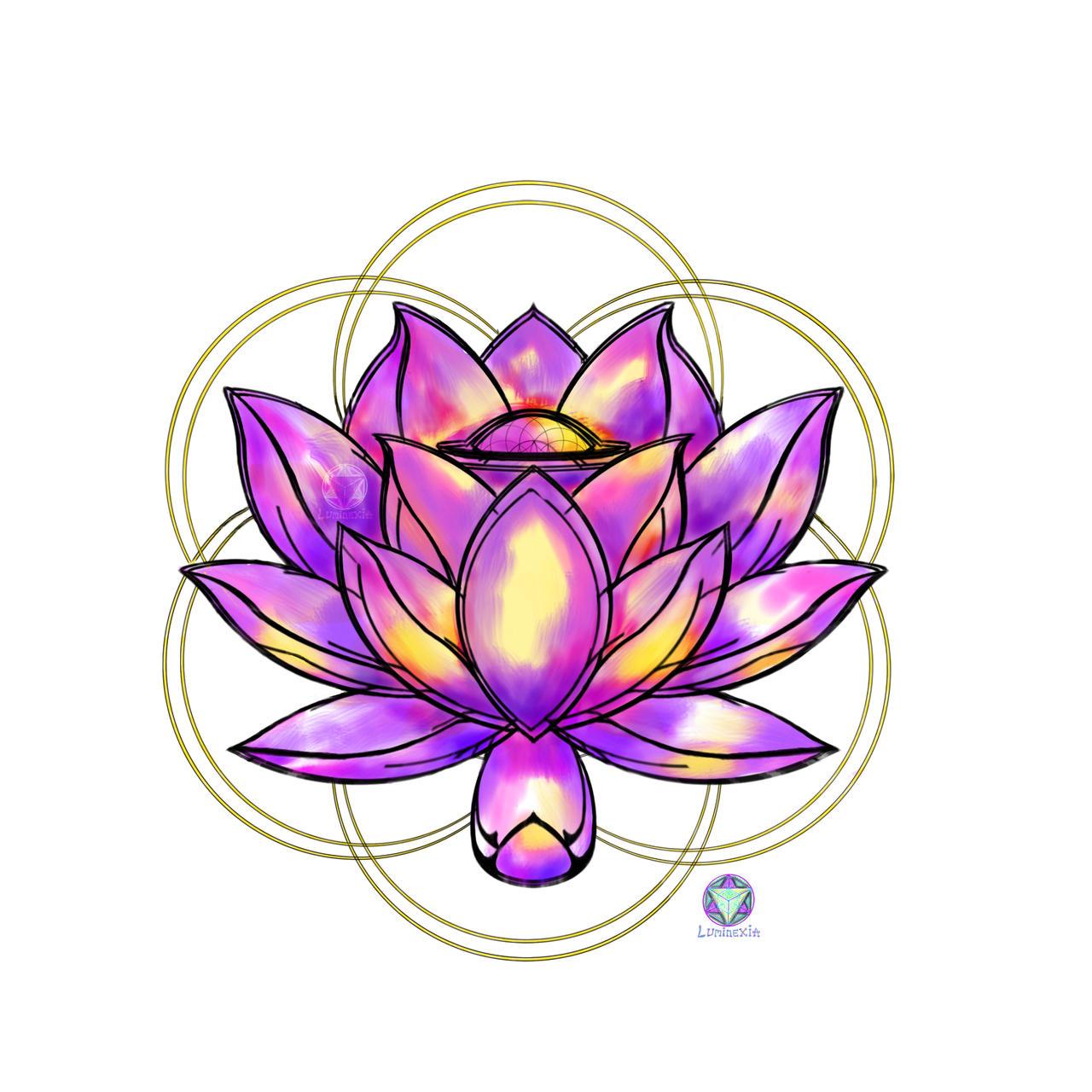 lotus flower of life Light version by SlavaNasca on DeviantArt