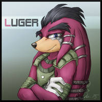 [Gift] Luger by BUGHS-22