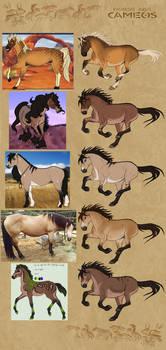 /Horse Age/ Cameo winners (1)