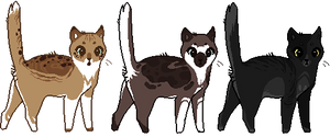 . cat adopts - open - 70 points each