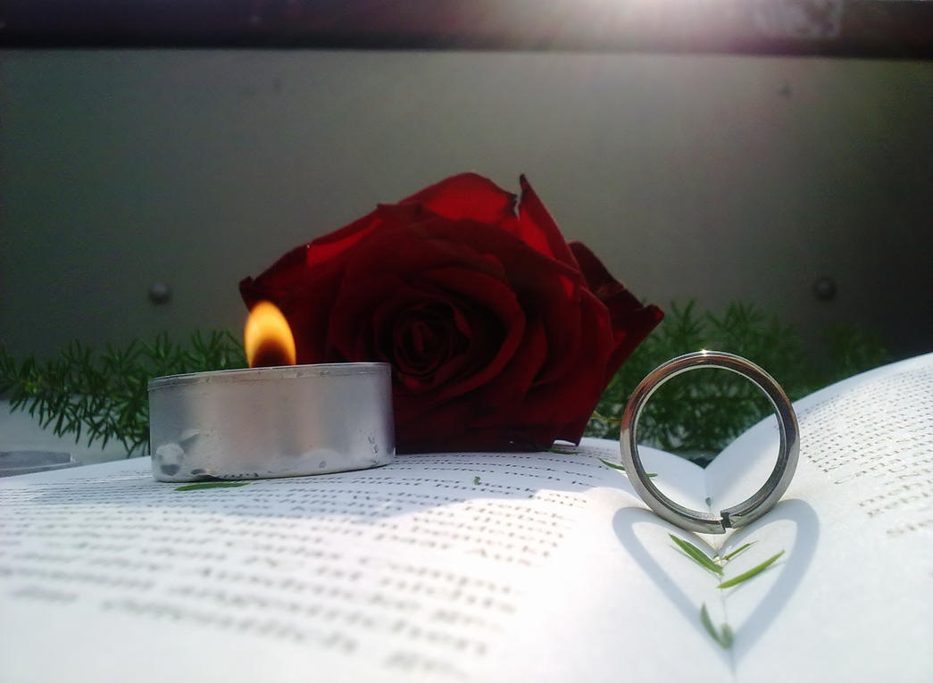 Plamen  svece - Page 2 Book__by_dreyerdan-d3hrmg0