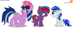 Paddy Sparkle, Charming Dazz and Hookline