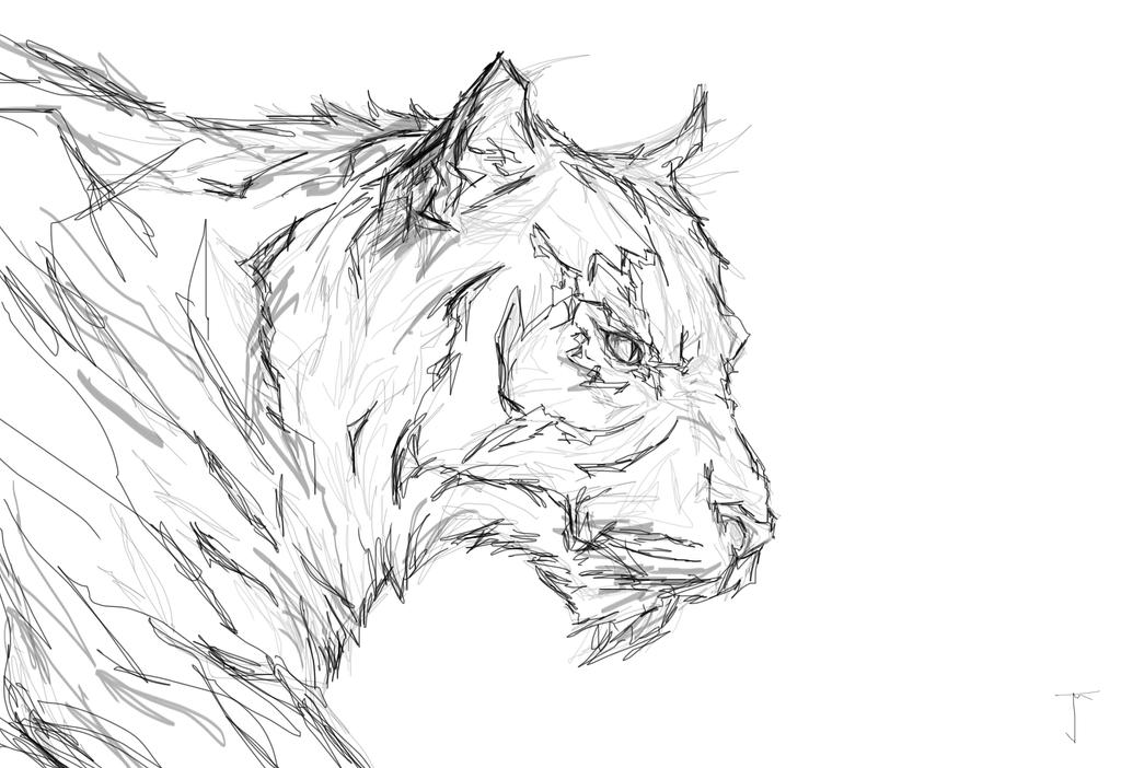 Tiger pencil sketch by...
