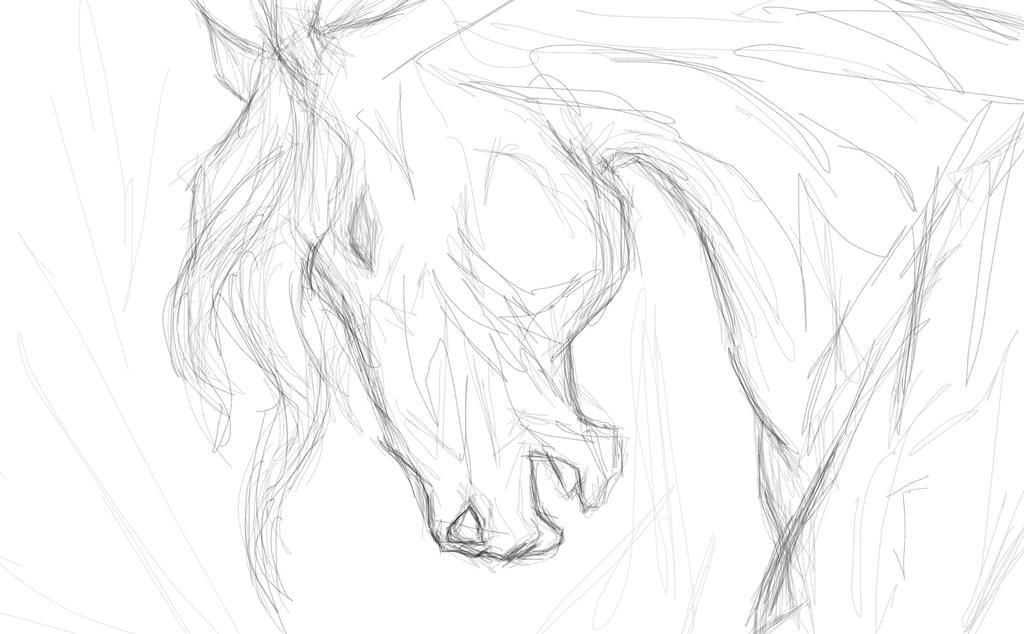 Simple horse head sketch