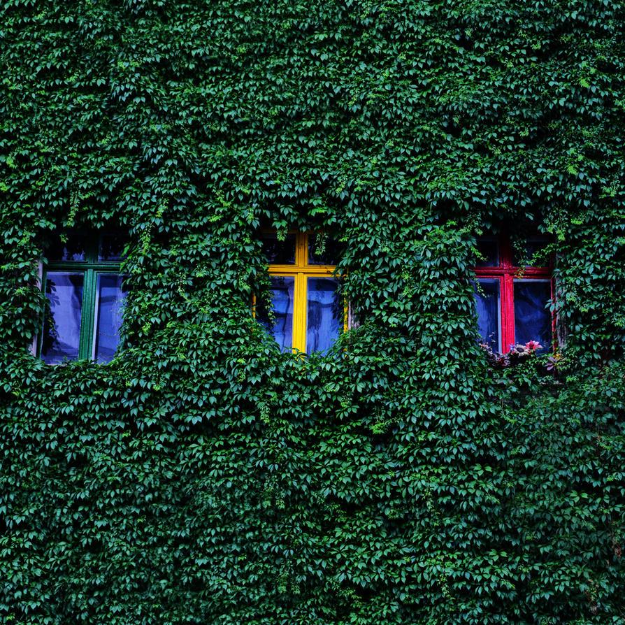 hide me inside of green by kopita