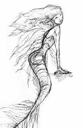 Mermaid Sketch